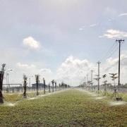 nhà máy khí điện đạm Cà Mau